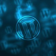 Must Have Plugins For WordPress 2018